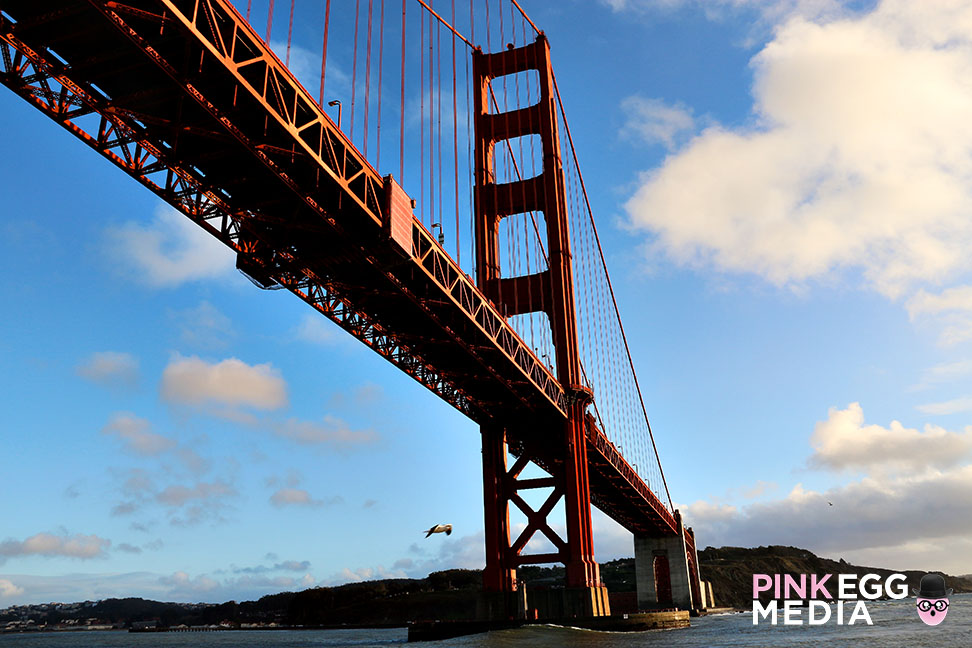 Bridge-to-Bridge-SF-AnaPines-13