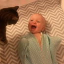 Baby Meets Cat For First Time