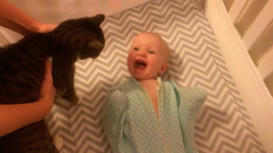 Baby Can't Stop Smiling At Cat