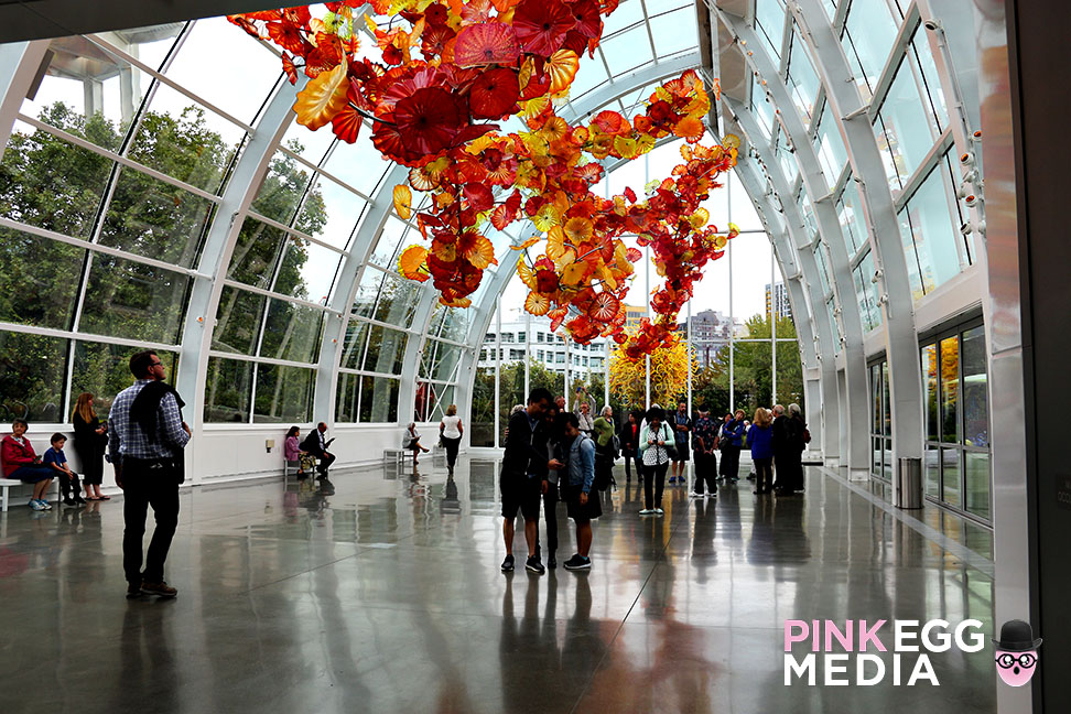 Chihuly Garden and Glass anapines 10