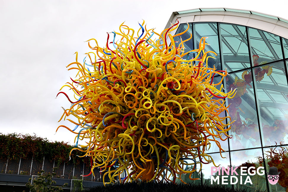 Chihuly Garden and Glass anapines 25